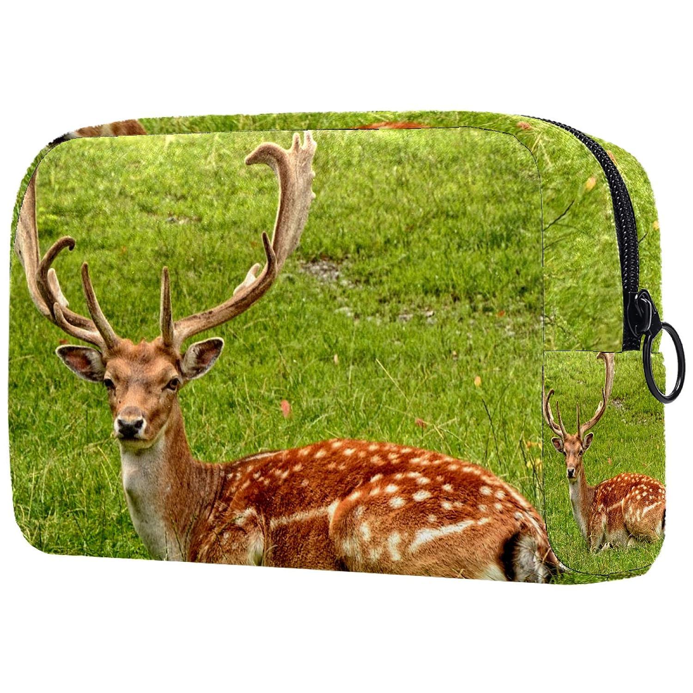 Cosmetic Bag for Women, Antler Carrier Fallow Deer Hirsch, Makeup Bags Accessories Organizer Gifts