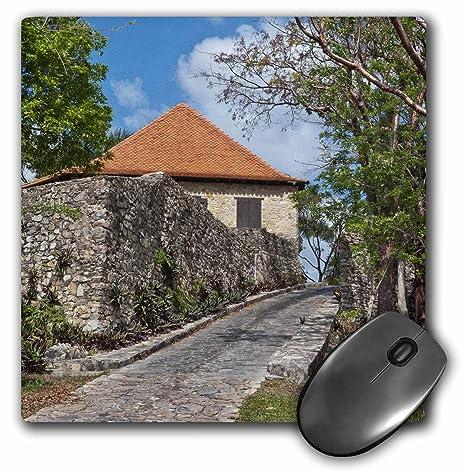 Danita Delimont - Plantations - Cuba, Las Terrazas, Sierra del Rosario, plantation: Amazon.es: Electrónica