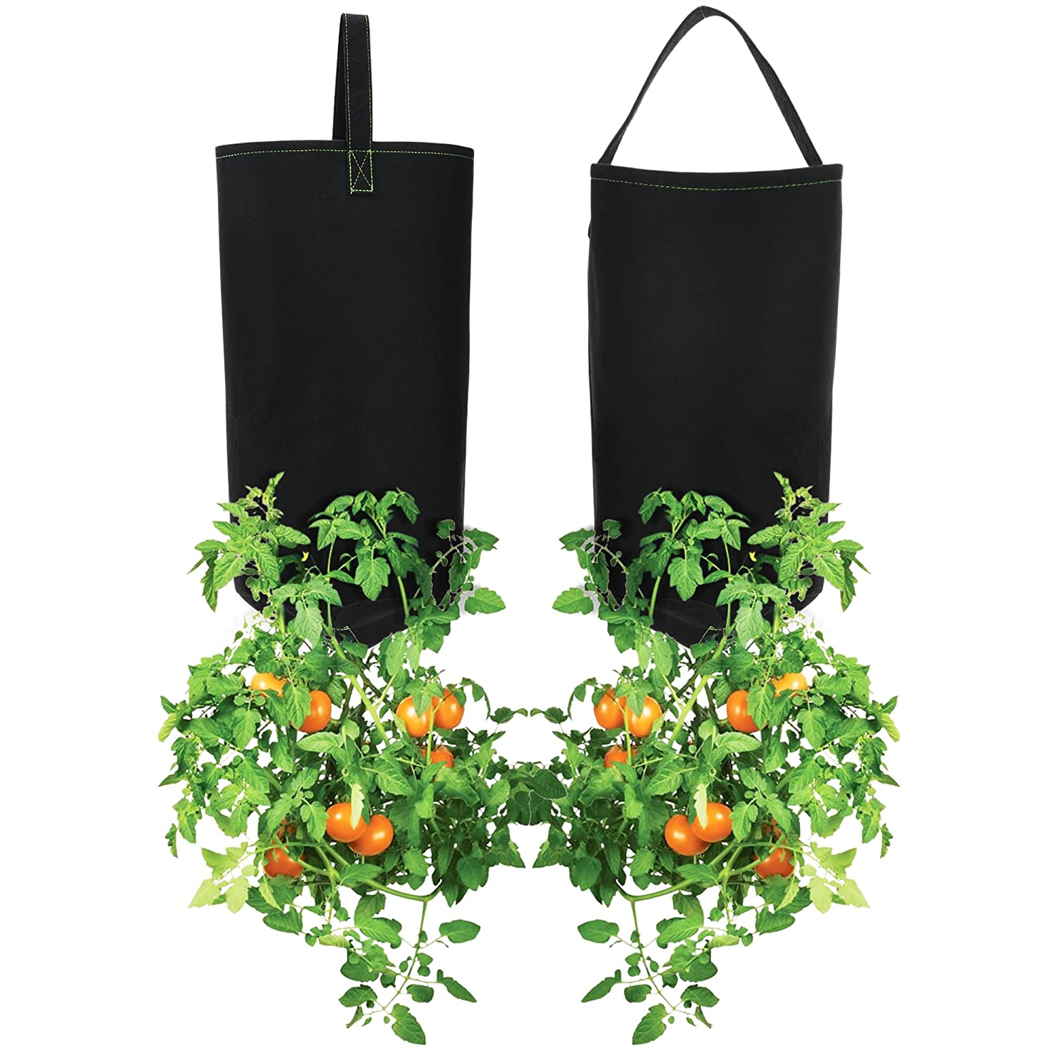 Pri Gardens Upside Down Tomato Planter, (2- Pack) | Hooks Included (Requires Fertilizer, not Included)