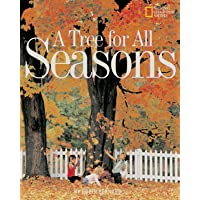A Tree for All Seasons (Rise and Shine)