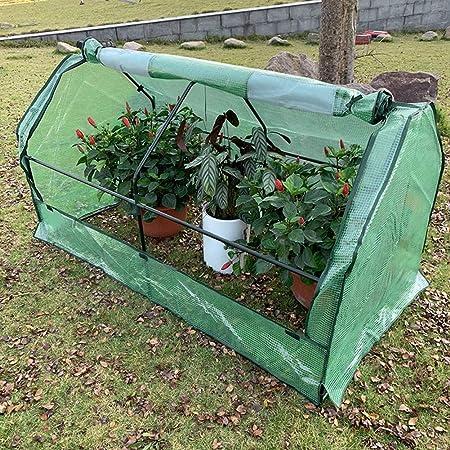Invernaderos Jardin Invierno BalcónProtección del Cobertizo Flores Planta Almacenamiento Habitación Grande Capacidad PE Impermeable contra Nieve, 2 Colores 2 Tamaños BAI Yin: Amazon.es: Hogar
