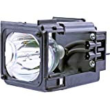 Philips OEM PHI/389 Replacement DLP Lamp for Samsung BP96-01795A