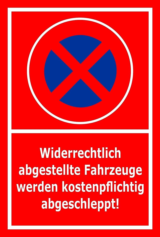 Melis S00350-031-D - Pegatina para Cartel de Prohibido ...