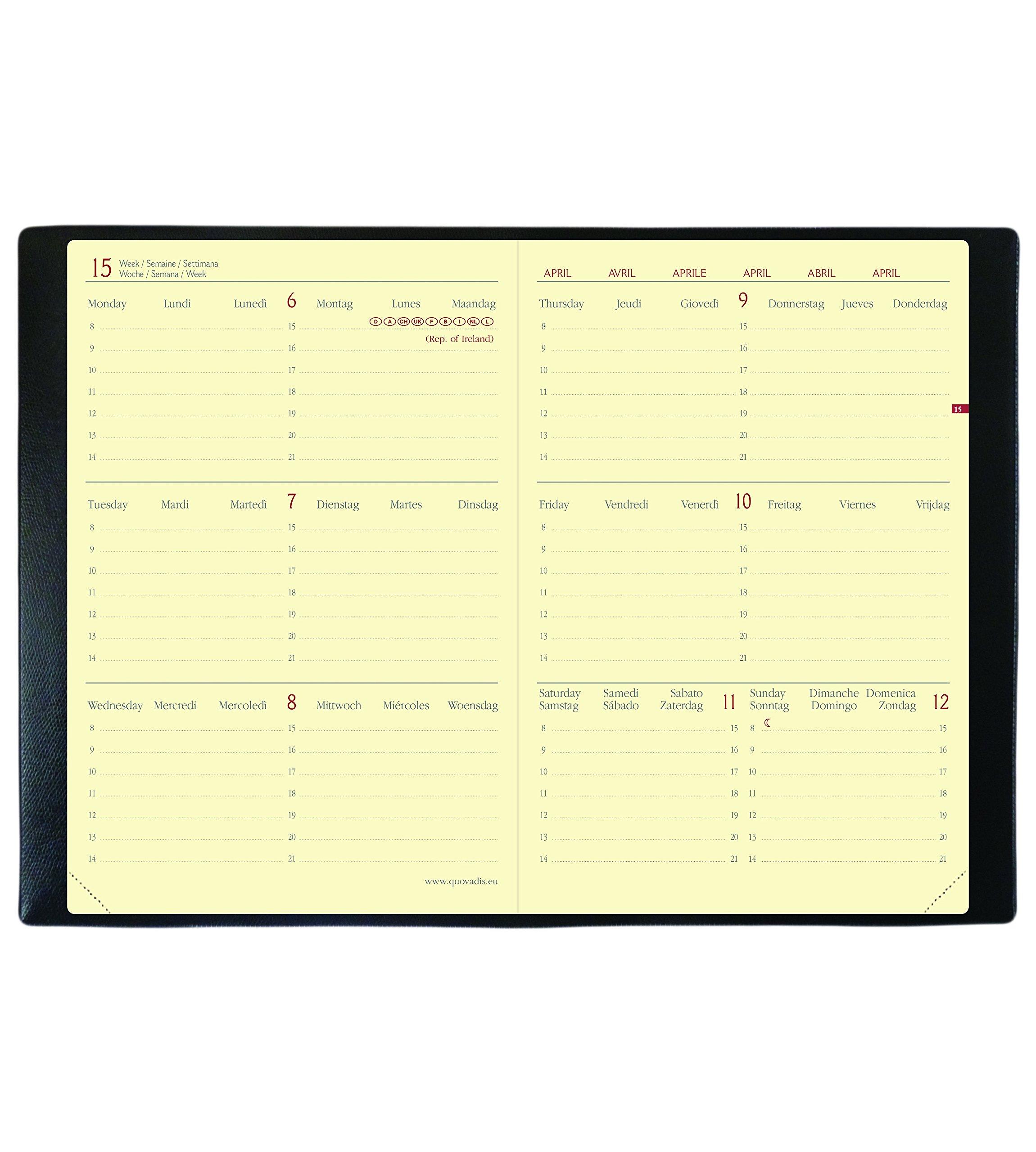Quo Vadis Horizontal Velvet 15 SD September to December 549008q Academic Diary Year Diary with Elastic 10 x 15 cm 2017-2018 - Velvet Black by Quo Vadis (Image #3)