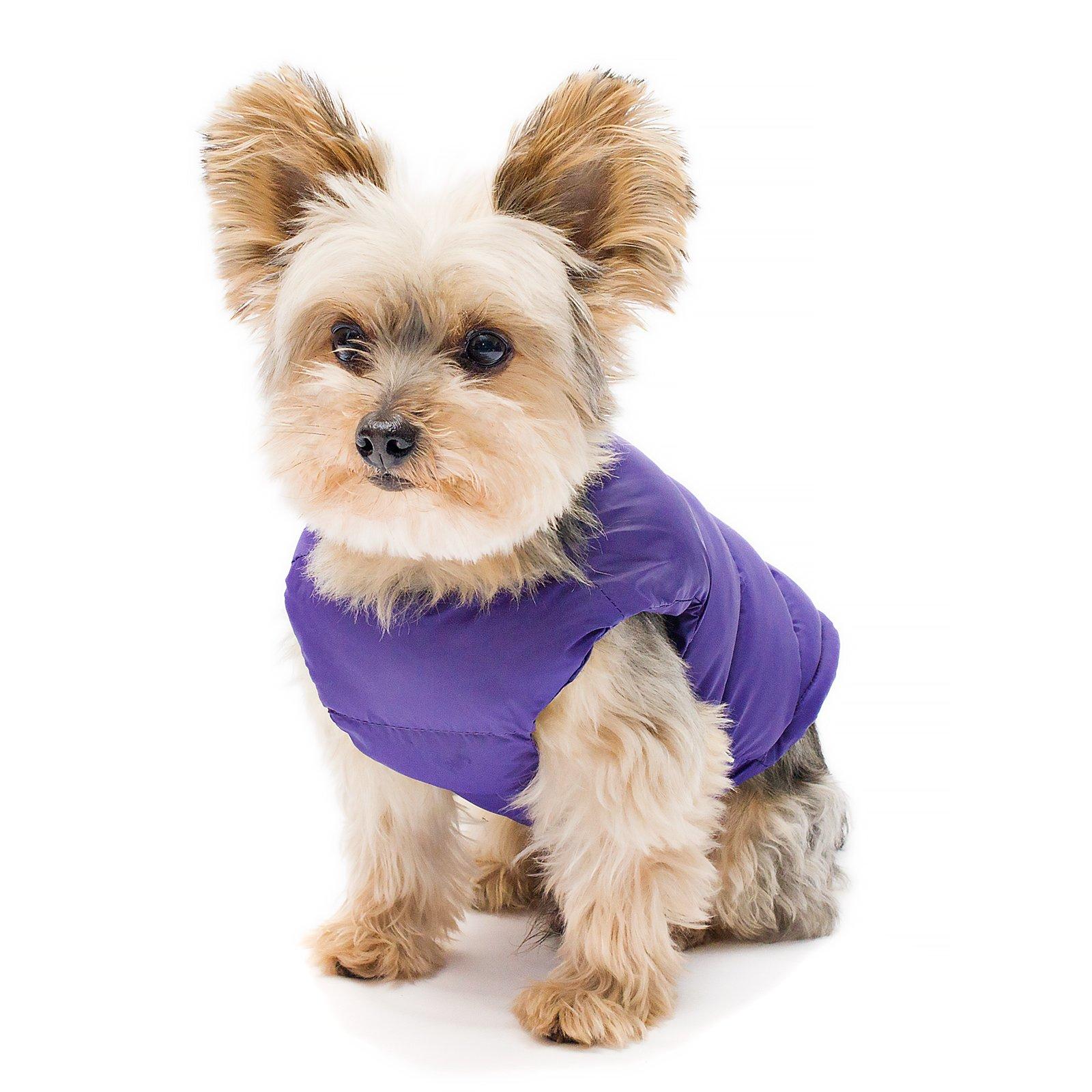 Stinky G Puffy Dog Coat Royal purple Size #08