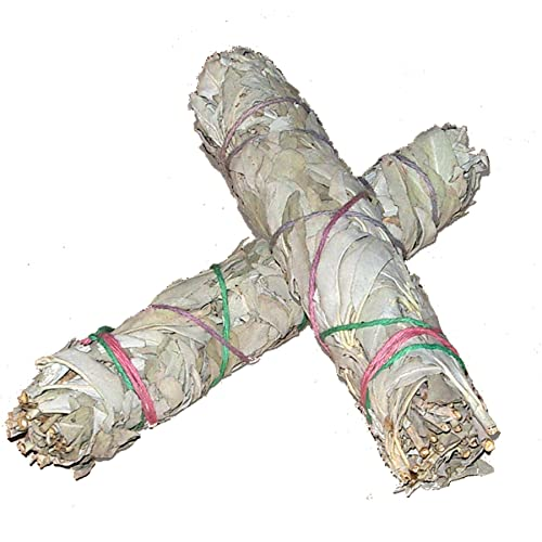 Pack of 2: WHITE SAGE Quality by Native Spirit XL Smudge Stick 7''-8'' (~18-21cm; je ~40-55gr) Incense fresh from California, buffalo sage, indian sage, wands