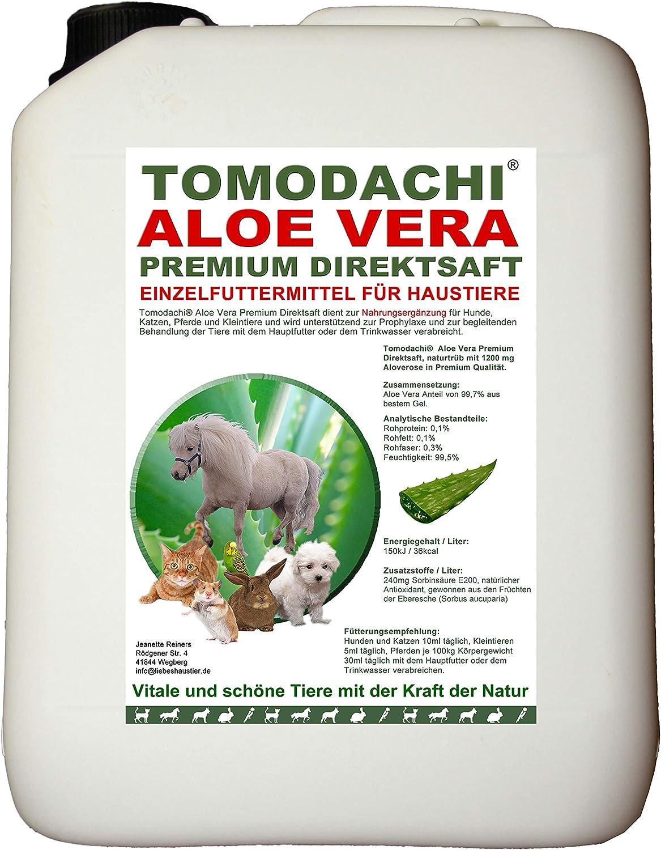 Aloe Vera gato, Premium directamente Zumo, forro adicional, complemento comida para gatos, producto natural sin productos químicos., tomodachi Aloe Vera Premium directamente Zumo de El Interior Gel de Aloe Vera fresca Plantas