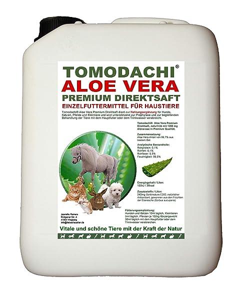 Aloe Vera gato, Premium directamente Zumo, forro adicional, complemento comida para gatos, producto natural sin productos ...