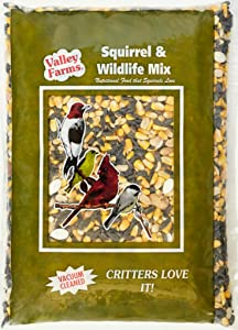 Valley Farms Squirrel & Wildlife Mix - Wild Bird Food - 4 LBS