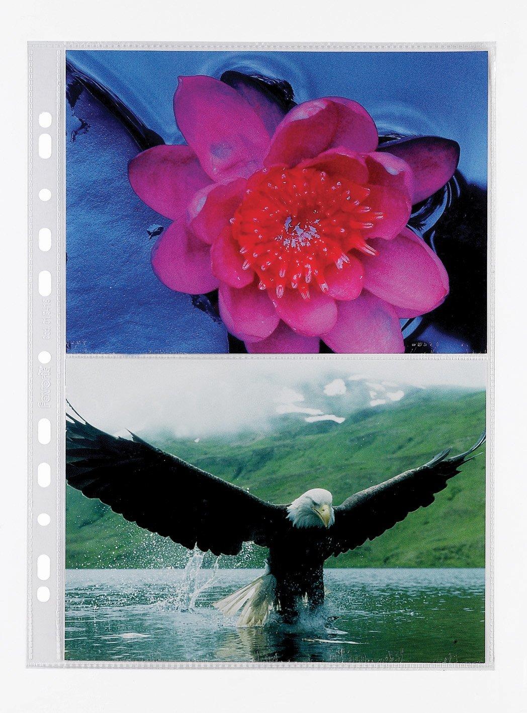 Favorit 100460152 Busta a Foratura Porta Fotografie con 2 Tasche Formato 21X15 cm, Confezione da 10 Pz. Hamelin Brands 949546
