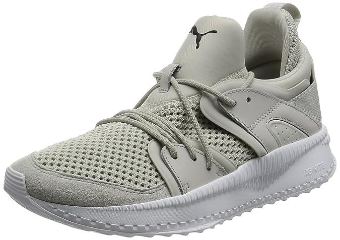 adidas Terrex Ax2 CP, Chaussures de Cross Homme, Bleu (Blue Beauty F10/Core Black/Grey Five F17 Blue Beauty F10/Core Black/Grey Five F17), 50 2/3 EU