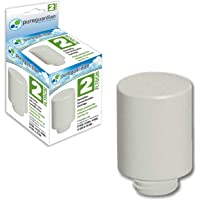 Pure Guardian FLTDC20 Humidifier Demineralization Filter, Cartridge #2, 700 Hrs. Run Time, Prevents Release of Minerals Into Air, Fights White Dust, Easy Application to PureGuardian Humidifier