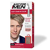Just For Men Easy Comb-In Color (Formerly Autostop), Gray Hair Coloring for Men...