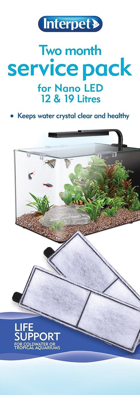 Interpet Paquete de Dos Meses de Mantenimiento para acuarios Nano LED: Amazon.es: Productos para mascotas