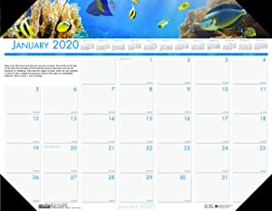 House of Doolittle 2020 Monthly Desk Pad Calendar, Earthscapes Sea Life, 22 x 17 Inches, January - December (HOD193-20)