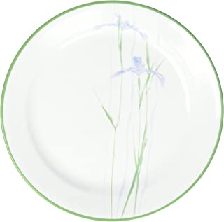 """product image for Impressions Shadow Iris 9"""" Plate [Set of 6]"""