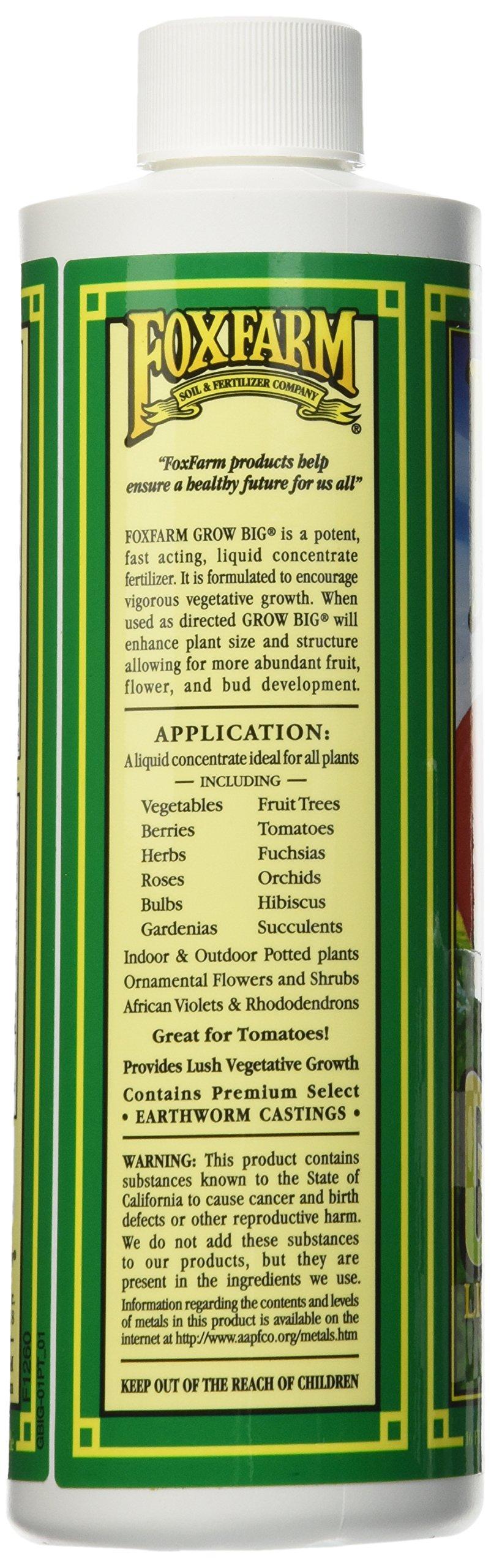 Fox Farm FX14092 Grow Big Liquid Concentrate Fertilizer, Soil NPK 6-4-4, 1-Pint