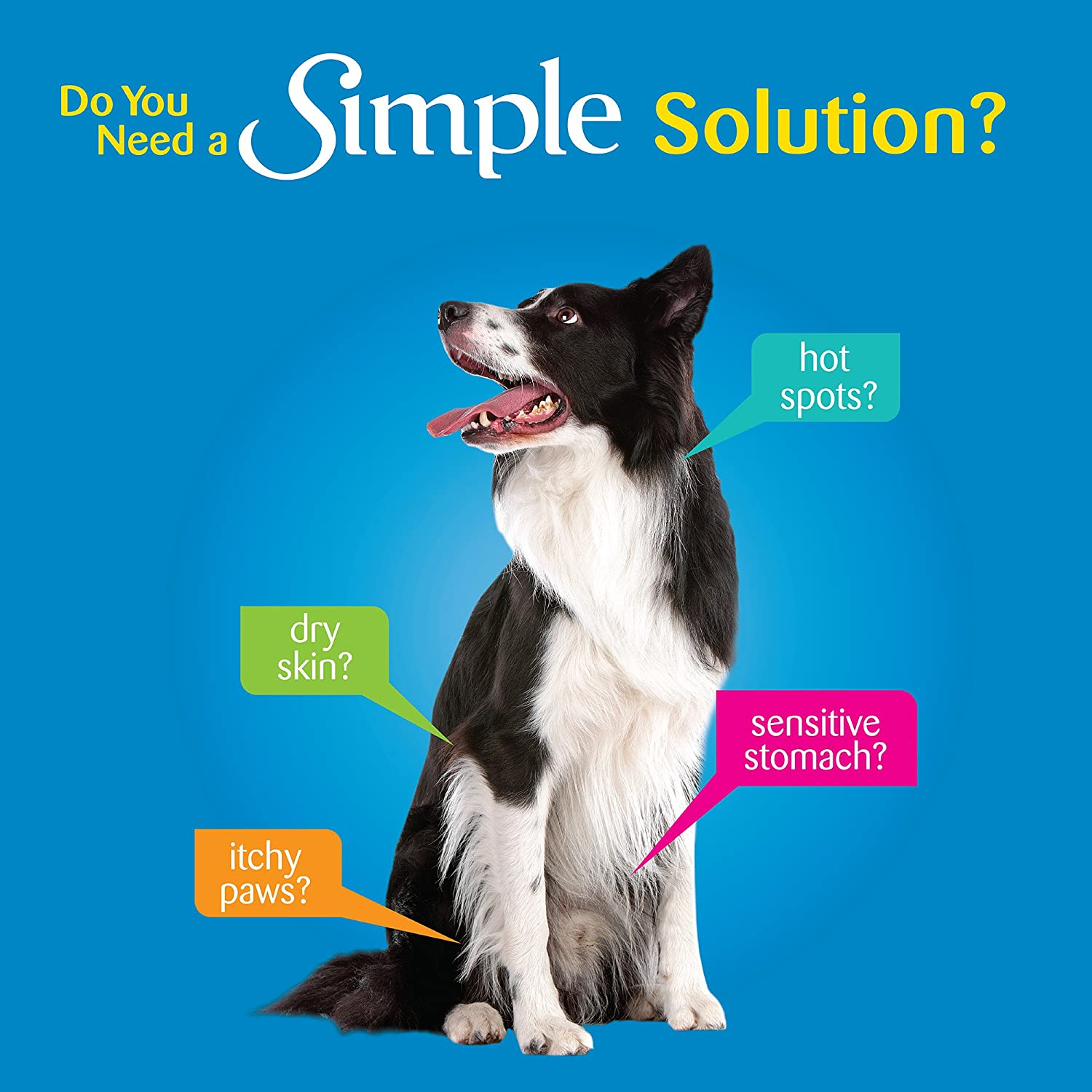 Wellness Simple Natural Grain Free Dry Limited Ingredient Dog Food ...