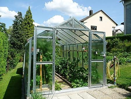 myowngreen Invernadero con Cristal irrompible (2, 5 x 3, 05 m, Estructura de Metal galvanizado: Amazon.es: Jardín