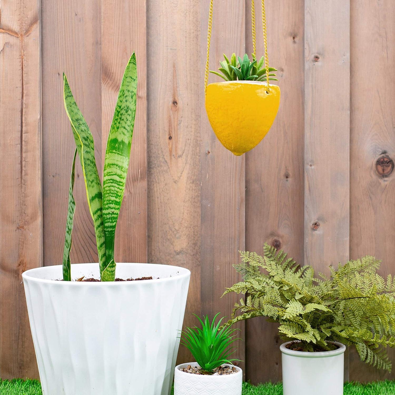 Regency International Sunshine Yellow Lemon 5 5 X 5 Dolomite Decorative Hanging Planter Garden Outdoor