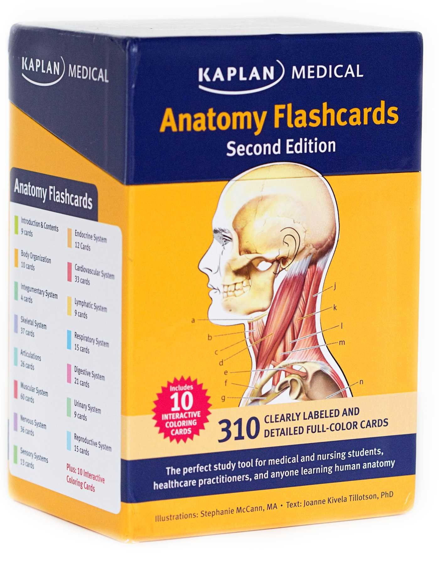 Anatomy Flashcards: Joanne Tillotson, Stephanie McCann ...