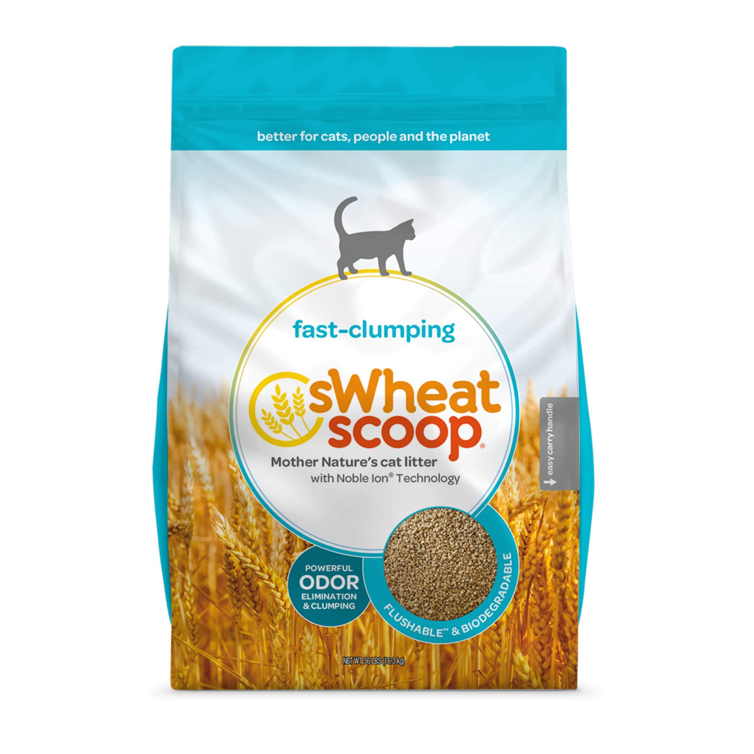 sWheat Scoop Regular Litter, 36 lb by sWheat Scoop