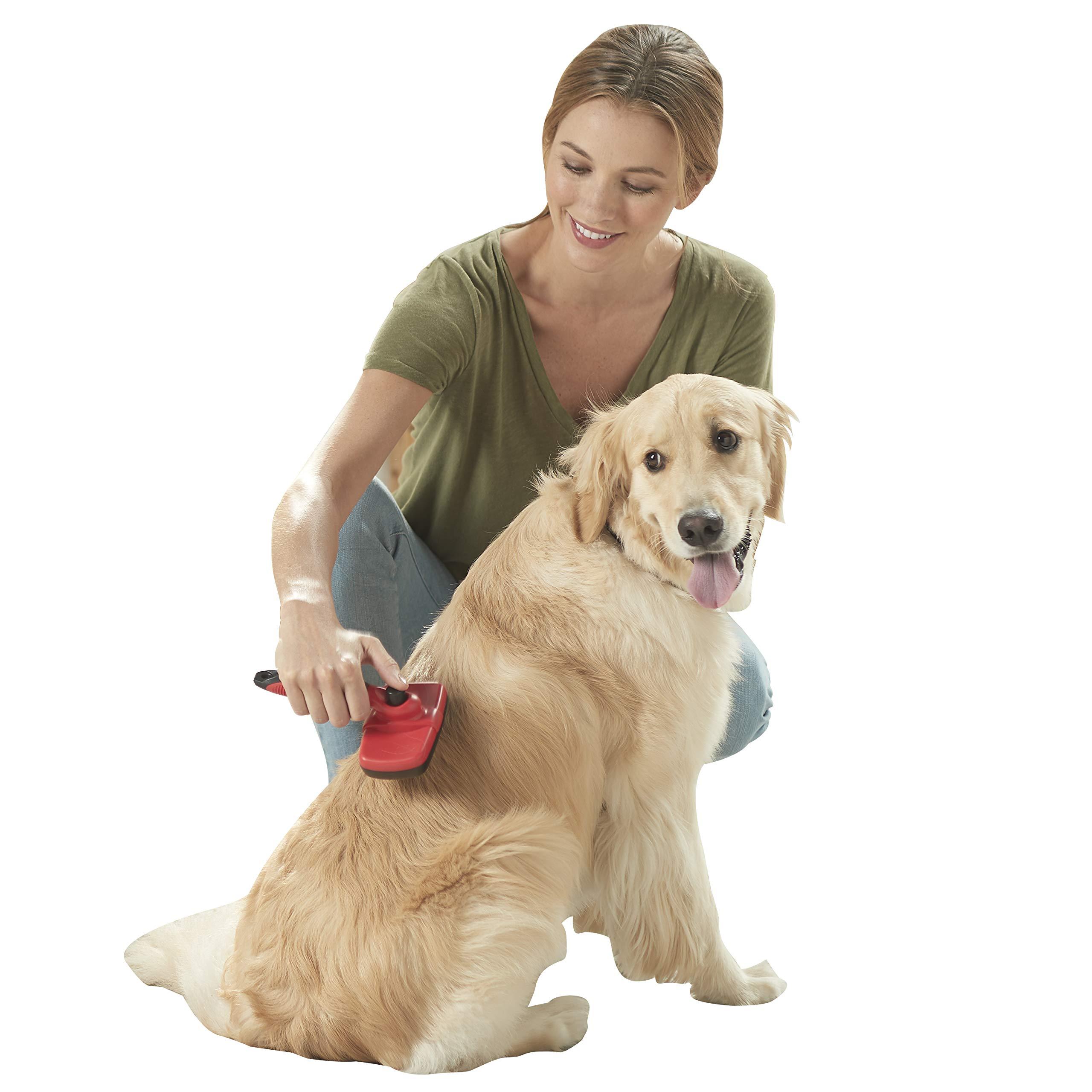 Franklin Pet Supply Shed-Master Dog Grooming Brush - Short Hair - De-Shedding Dogs - Reduce Shedding - Self-Cleaning