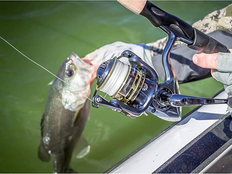 how to choose the best ultralight spinning reels