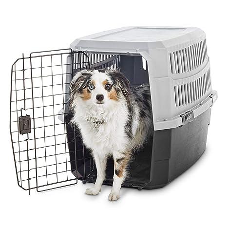 Amazon.com: animaze estándar jaula para perros o gatos, S ...