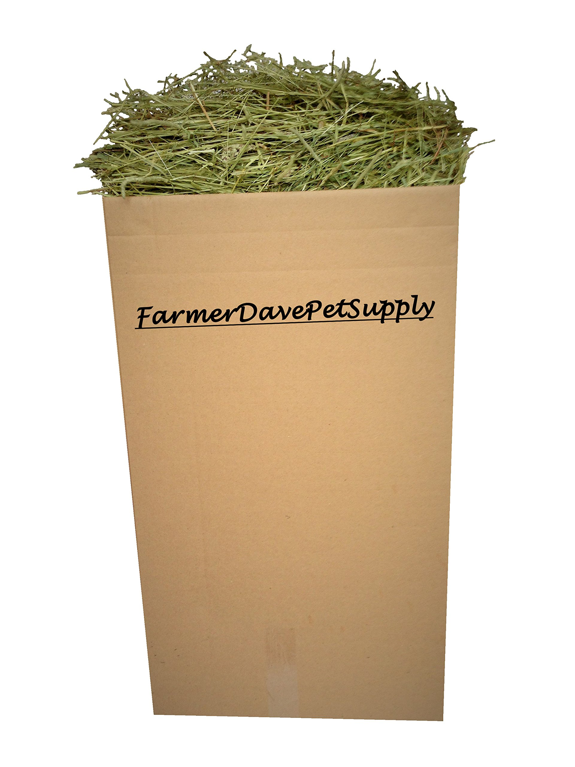 FarmerDavePetSupply 35 Lb First Cut Timothy Hay, Rabbit and Bunny Hay by FarmerDavePetSupply