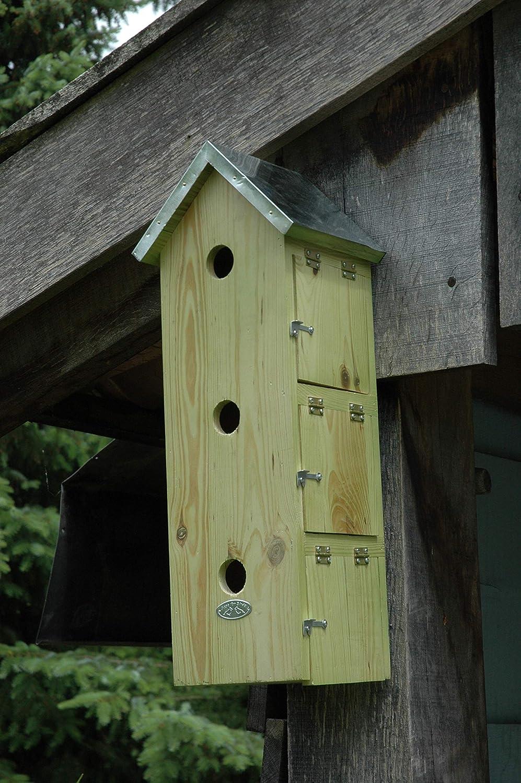 FAL Caja de Madera Plana para Nido de pájaro gorrión, para Montar en la Pared