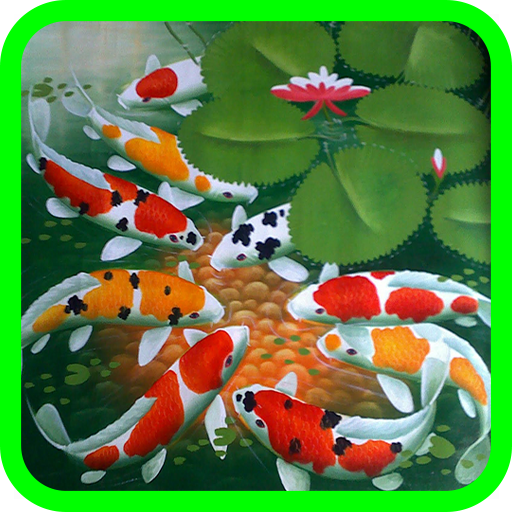 Amazon Com Koi Fish Wallpaper Appstore For Android