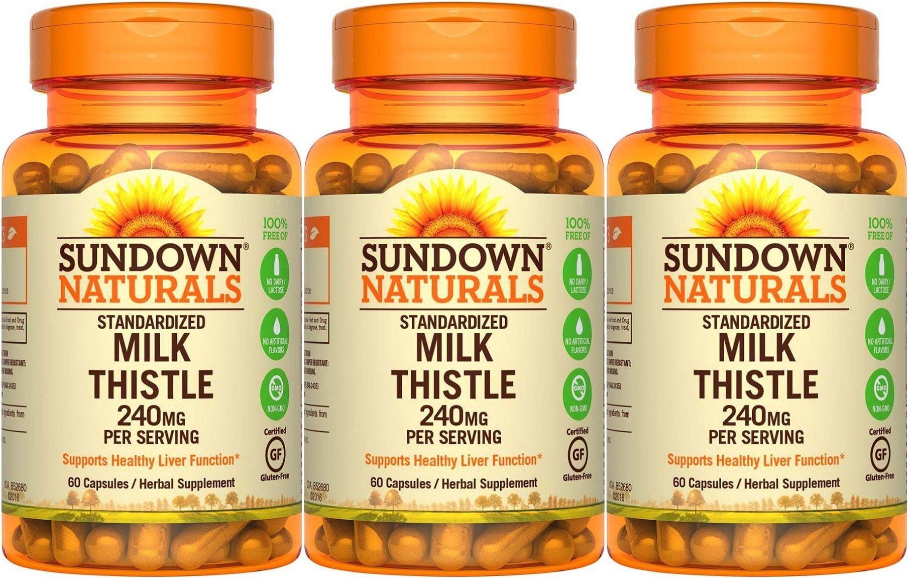 Sundown Naturals Standardized Milk Thistle 240 mg, 180 Capsules (3 X 60 Count Bottles)