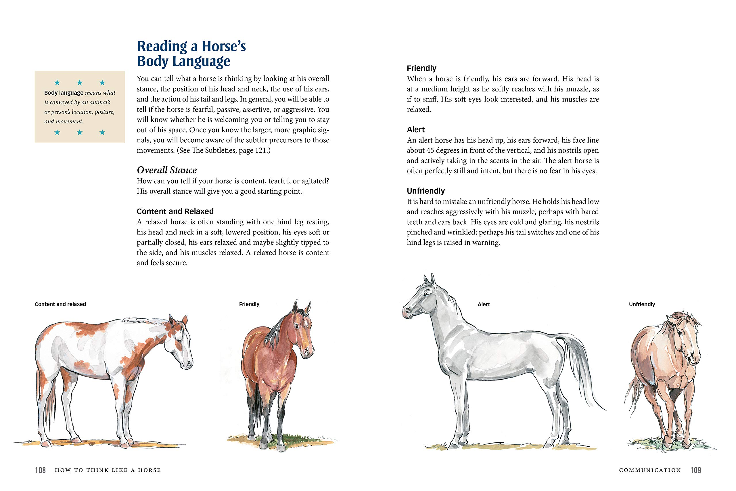 How To Think Like A Horse The Essential Handbook For Understanding