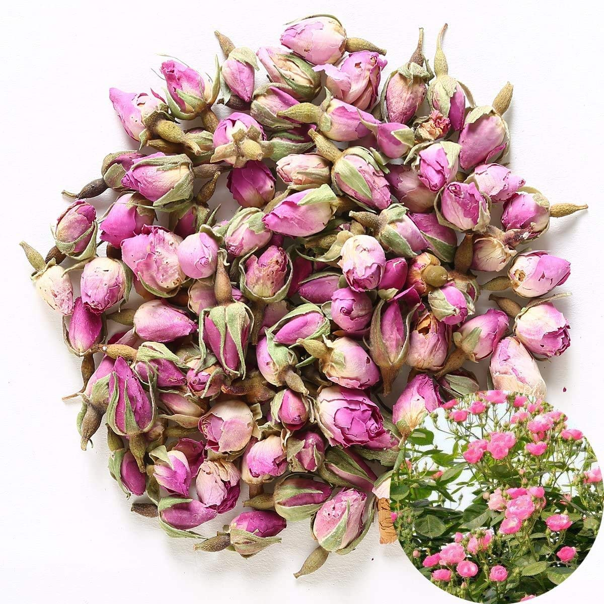 TooGet Fragrant Natural Pink Rose Buds Rose Petals Pure Dried Rosa Damascena Wholesale, Culinary Food Grade - 4 OZ