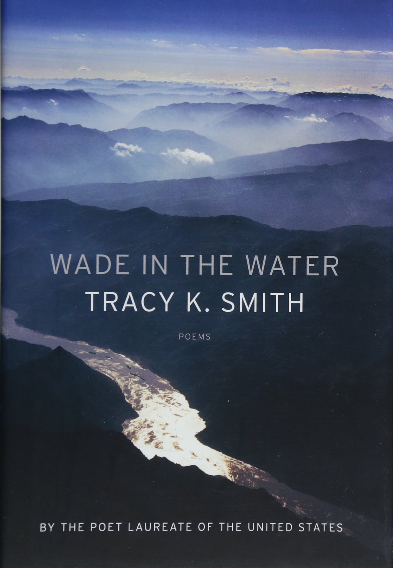 Image result for Wade in the water book