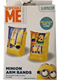despicable me swimming arm bands