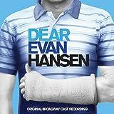 Dear Evan Hansen (Original Broadway Cast Recording)(2LP)