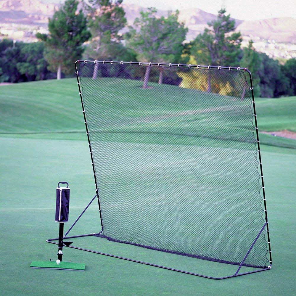 Perfect Swing Home Driving Range (Golf Net, Golf Mat, Shag Bag, & Teeing Machine)