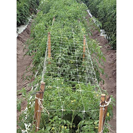 Hortomallas Professional Grade Vegetable Support Trellis Netting Scrog Net  Climbing Plants Fruits Vine Veggie Flowers (