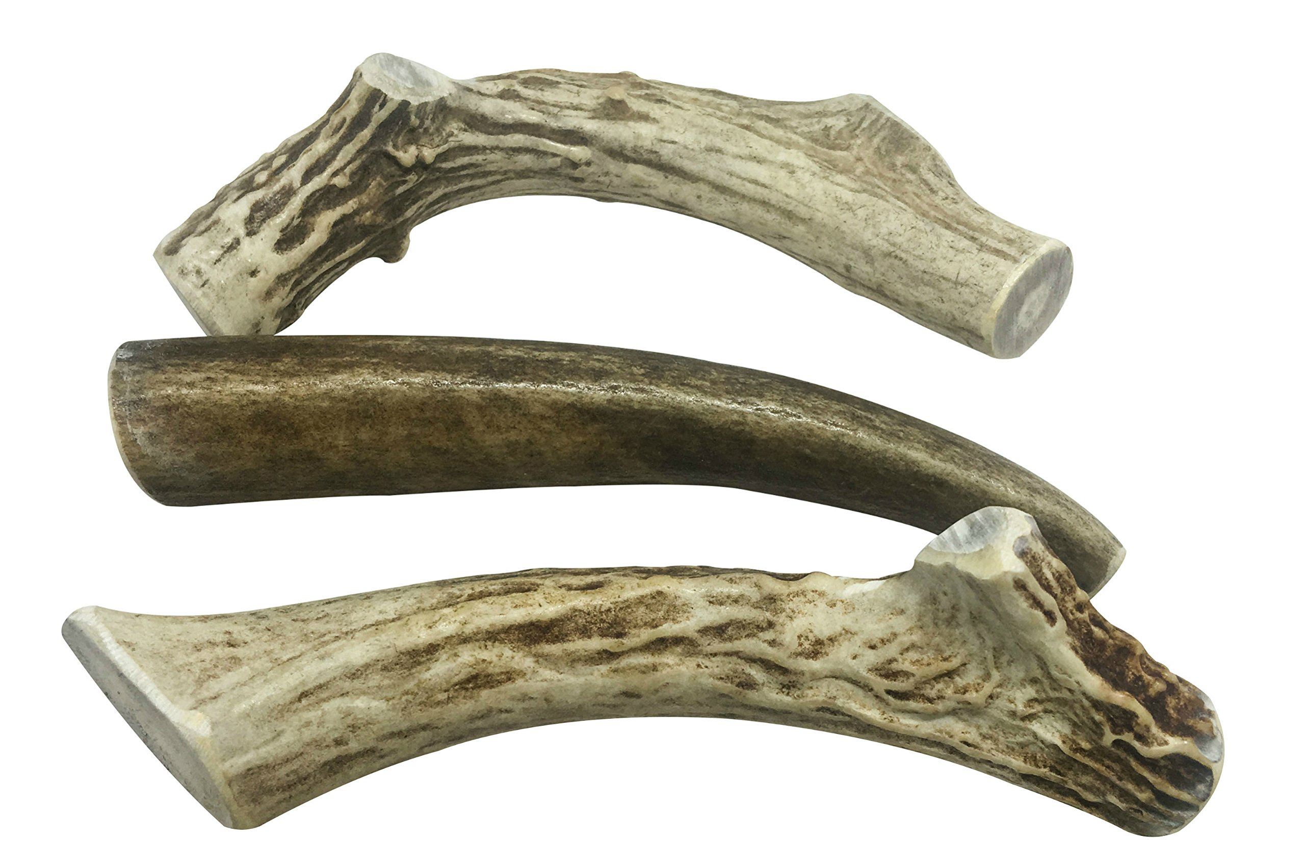 WhiteTail Naturals 3 Pack- Deer Antler Dog Chews Medium 5 to 6 Inches Long. by WhiteTail Naturals