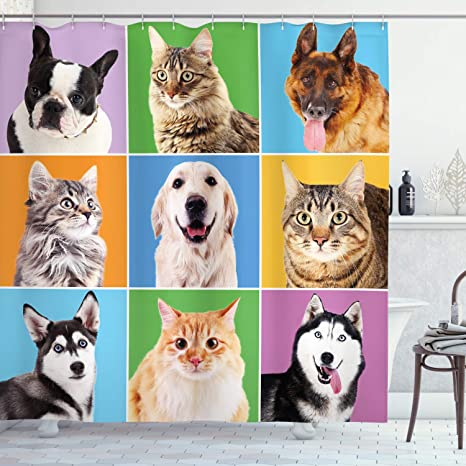 Amazon Com Ambesonne Animal Shower Curtain Various Dog And Cat Portraits Puppies Kittens Pet Company Funny Humor Design Cloth Fabric Bathroom Decor Set With Hooks 70 Long Green Blue Home Kitchen