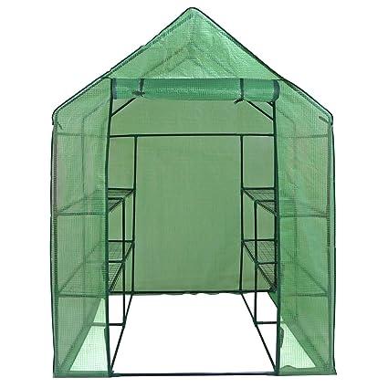 Amazon.com : ZENY Patio Mini Walk In Greenhouse Garden Plant Shelf Green  House Tent 2 Tiers 8 Shelves 57u0027u0027x57u0027u0027x77u0027u0027H : Garden U0026 Outdoor