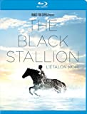 Black Stallion, The [Blu-ray]