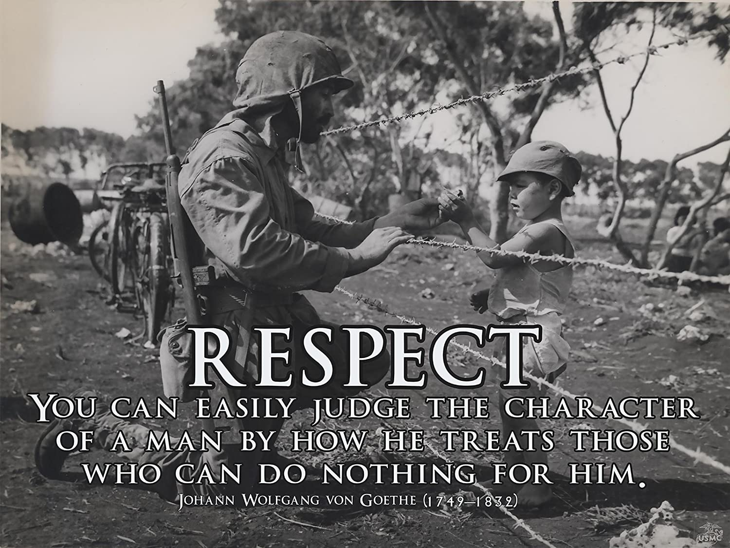Amazon.com: Respect Poster Military Motivation Poster ...