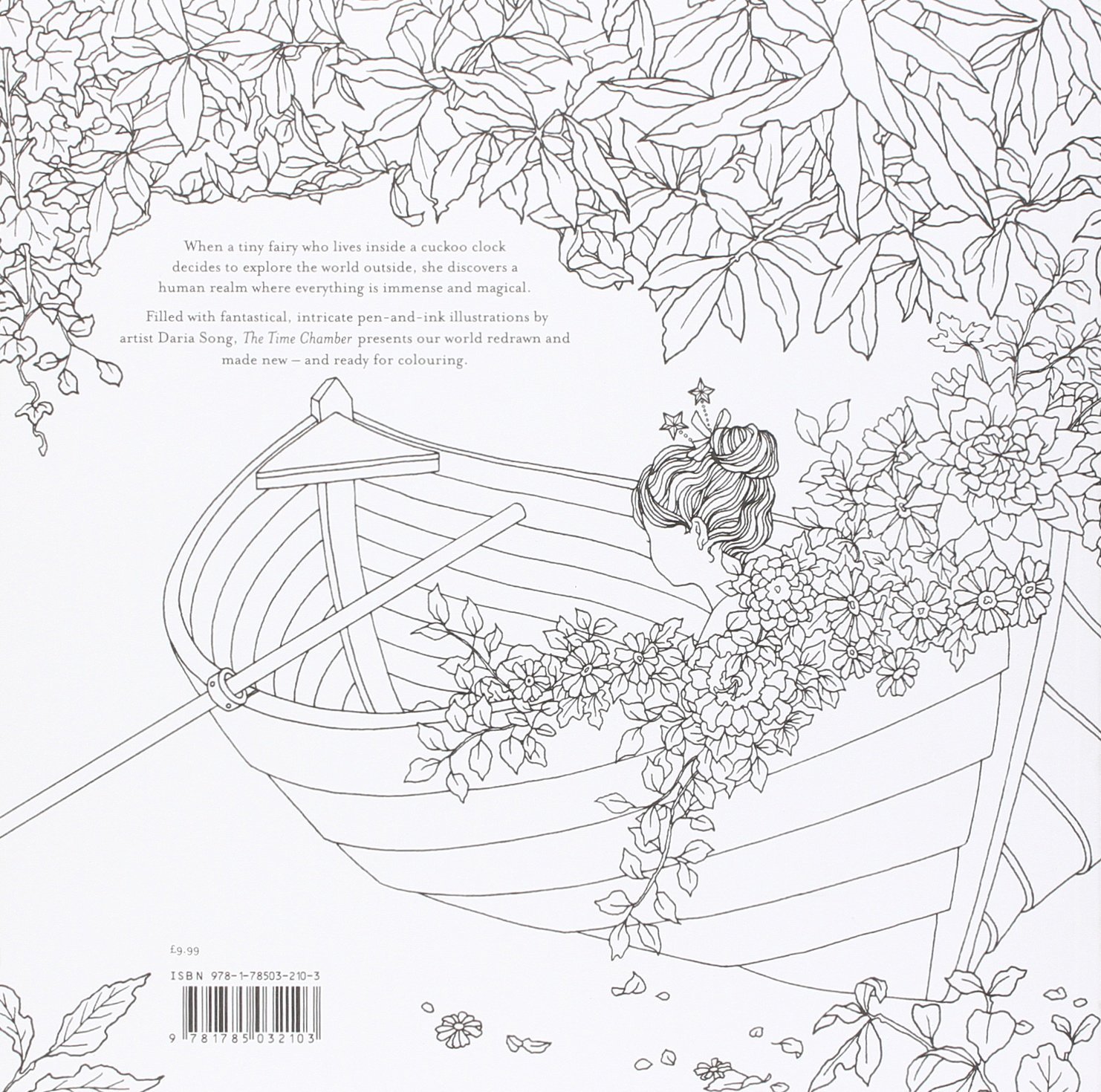 The Time Chamber A Magical Story And Colouring Book Amazoncouk Daria Song 9781785032103 Books