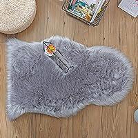 Deals on Loudbay Soft Faux Fur Rugs 2 Feet x 3 Feet