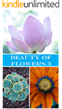 Beauty of Flowers 3: Photos (English Edition)