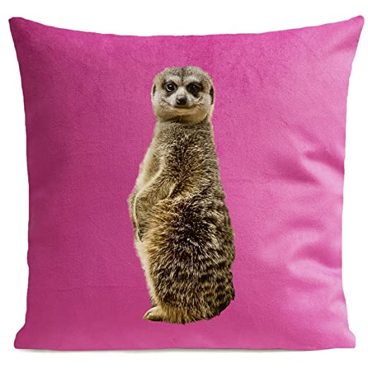 Cojín suricato terciopelo, tela, rosa fucsia, 60 x 60 cm ...