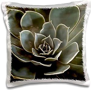 3dRose Taiche - Acrylic Painting - Succulent - Garden Succulent Green Gray Tones - 16x16 inch Pillow Case (pc_305936_1)